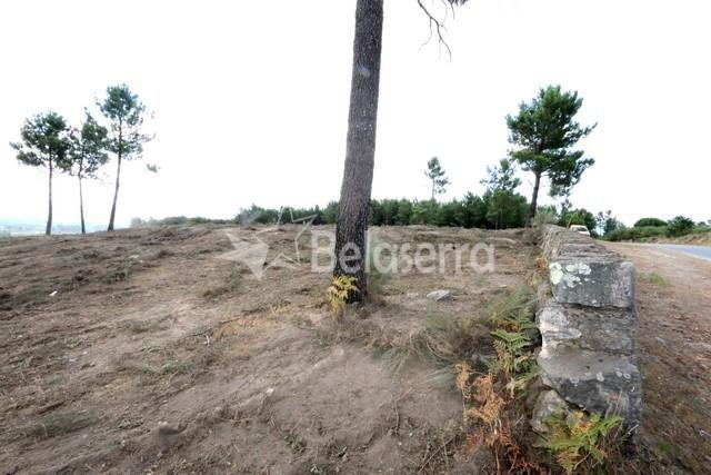 Terreno em Girabolhos