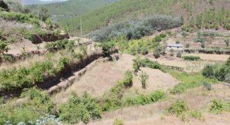 Terreno em Baloquinhas