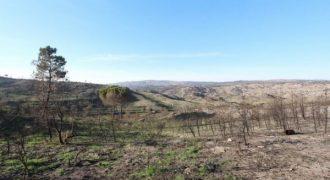Terreno em Arcozelo