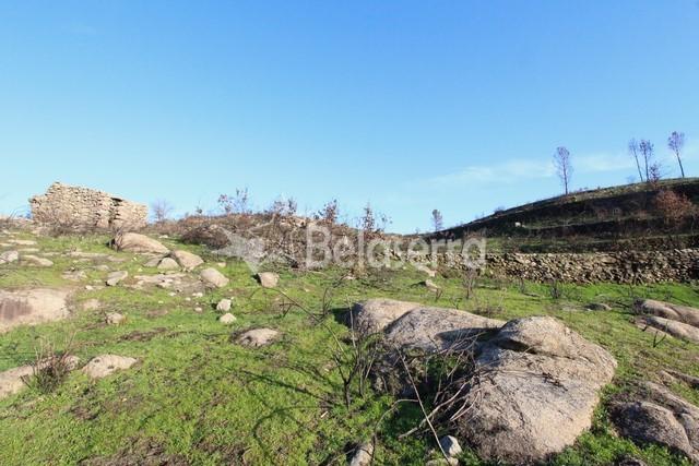 Quinta em Arcozelo