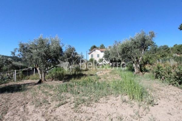 Quinta na Lajeosa