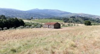 Quinta em Vila Cortês da Serra