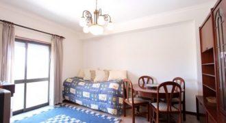 Apartamento T1 em Torrozelo