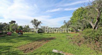 Terreno em Carragosela