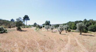 Quinta em Vila Franca da Serra