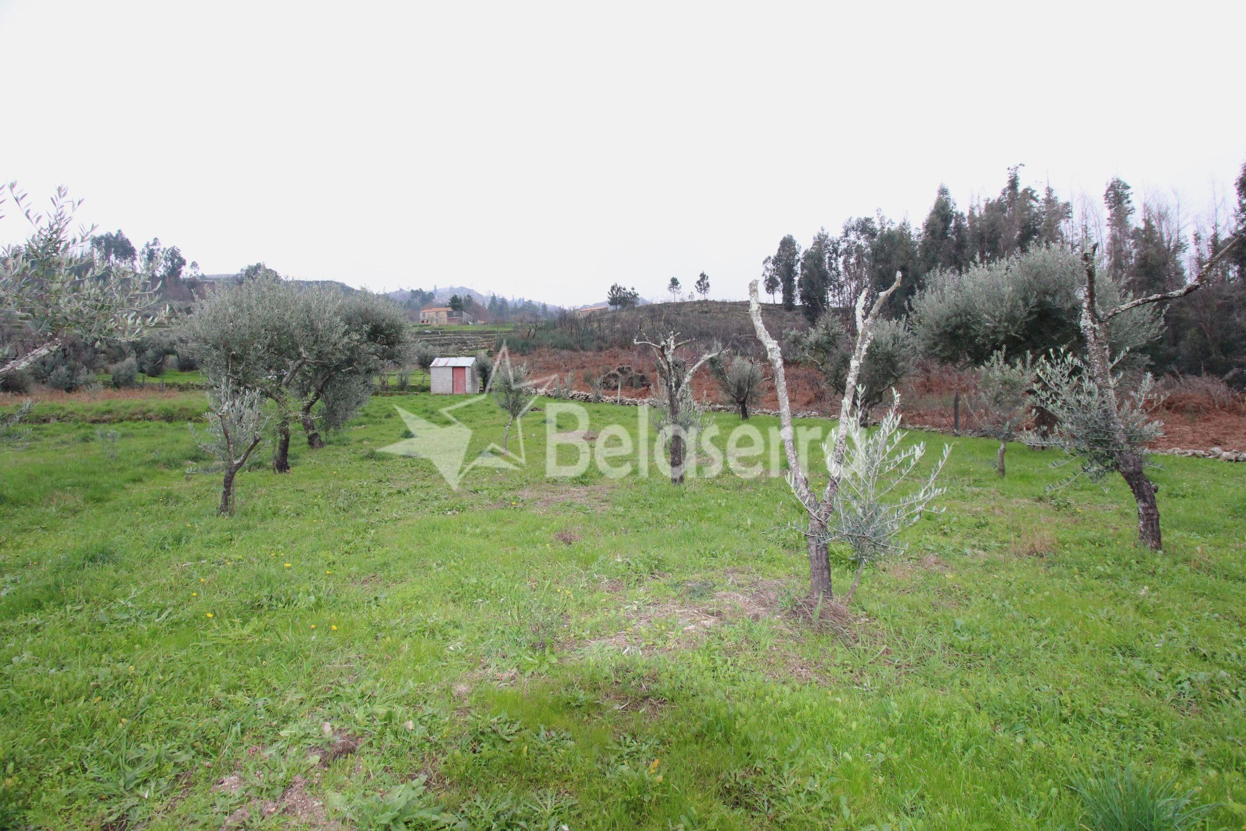 Terreno agrícola no Eirô