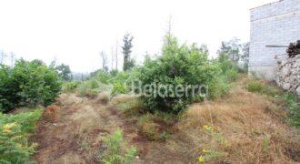Terreno agrícola em Santa Eulália