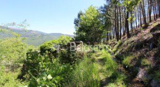 Terrenos em Vila Cova à Coelheira