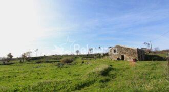 Quinta com ruína em Nogueira do Cravo
