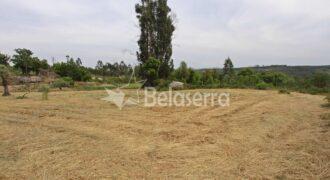Terreno agrícola no Espadanal – Tábua
