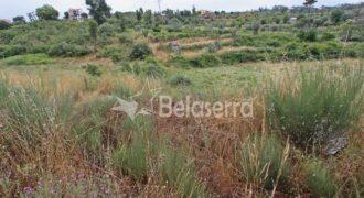 Terreno agrícola em São Paio de Gramaços